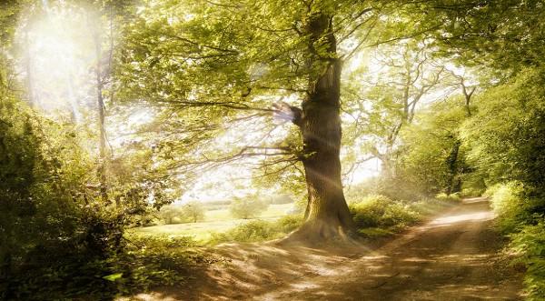 Andrew-Brooks-Landscape-Photography-4