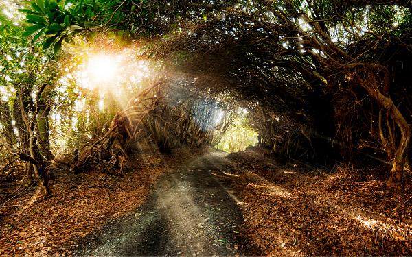 Andrew-Brooks-Landscape-Photography-7